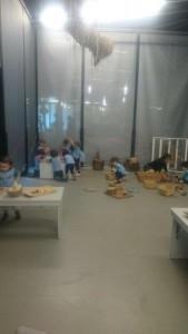 2.6 museu blau (5)